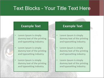 0000081131 PowerPoint Template - Slide 57