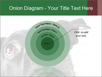 0000081131 PowerPoint Template - Slide 61