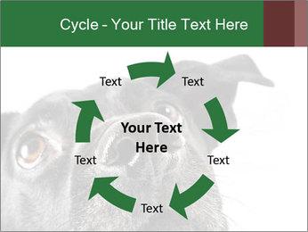 0000081131 PowerPoint Template - Slide 62