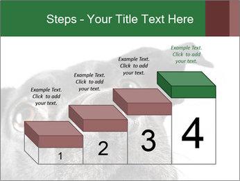0000081131 PowerPoint Template - Slide 64