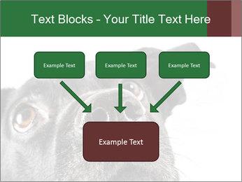 0000081131 PowerPoint Template - Slide 70