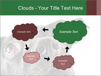 0000081131 PowerPoint Template - Slide 72
