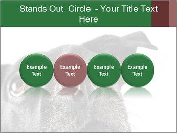 0000081131 PowerPoint Template - Slide 76
