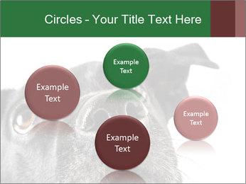 0000081131 PowerPoint Template - Slide 77