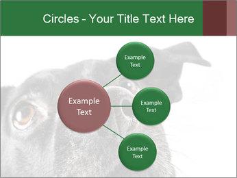 0000081131 PowerPoint Template - Slide 79