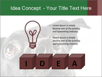 0000081131 PowerPoint Template - Slide 80