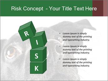 0000081131 PowerPoint Template - Slide 81