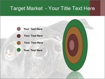 0000081131 PowerPoint Template - Slide 84