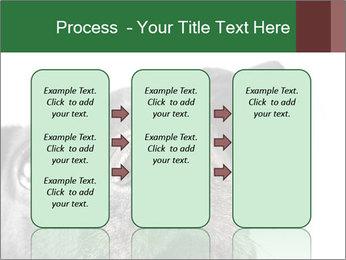 0000081131 PowerPoint Template - Slide 86