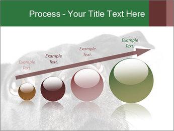 0000081131 PowerPoint Template - Slide 87