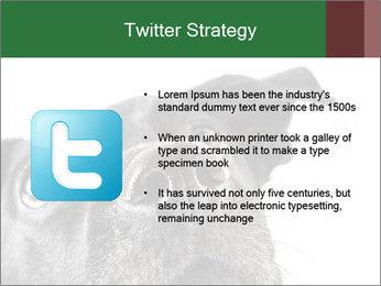 0000081131 PowerPoint Template - Slide 9