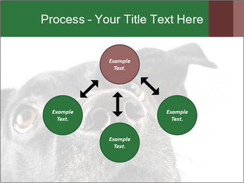 0000081131 PowerPoint Template - Slide 91