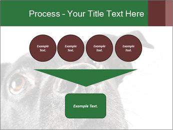 0000081131 PowerPoint Template - Slide 93