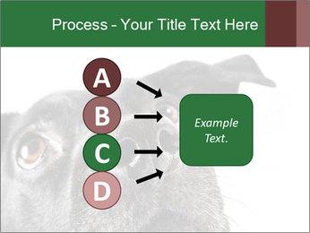 0000081131 PowerPoint Template - Slide 94