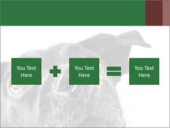 0000081131 PowerPoint Template - Slide 95