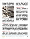 0000081135 Word Templates - Page 4