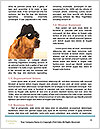 0000081140 Word Template - Page 4
