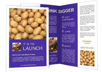 0000081148 Brochure Templates