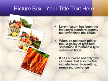 0000081148 PowerPoint Template - Slide 17