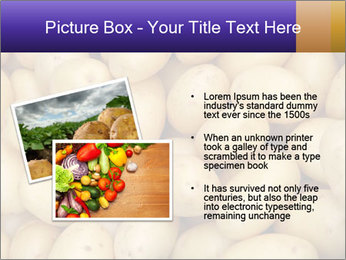 0000081148 PowerPoint Template - Slide 20