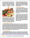 0000081148 Word Templates - Page 4