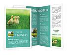 0000081149 Brochure Templates