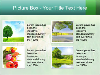 0000081149 PowerPoint Template - Slide 14