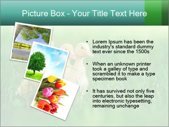 0000081149 PowerPoint Template - Slide 17