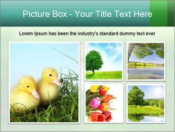 0000081149 PowerPoint Template - Slide 19