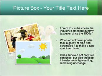 0000081149 PowerPoint Templates - Slide 20