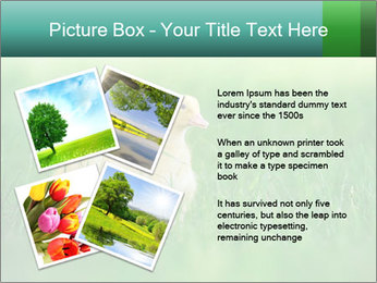 0000081149 PowerPoint Template - Slide 23