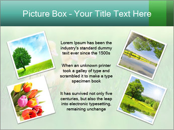 0000081149 PowerPoint Template - Slide 24