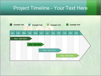 0000081149 PowerPoint Templates - Slide 25