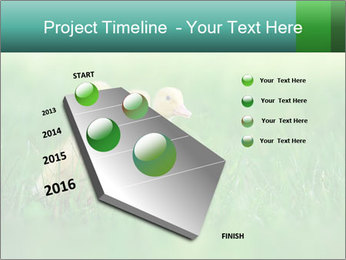 0000081149 PowerPoint Template - Slide 26