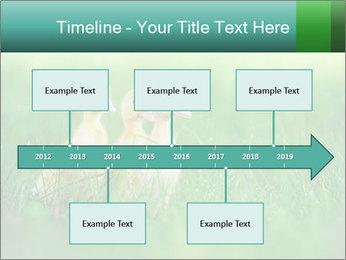 0000081149 PowerPoint Templates - Slide 28