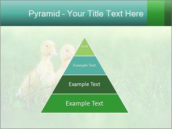 0000081149 PowerPoint Templates - Slide 30