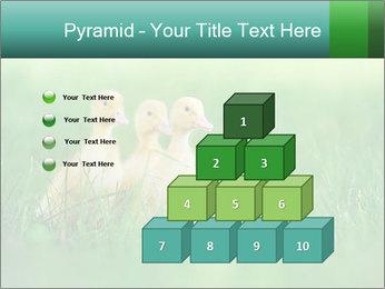 0000081149 PowerPoint Templates - Slide 31