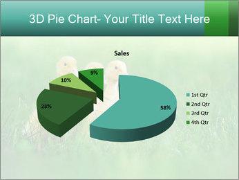 0000081149 PowerPoint Templates - Slide 35