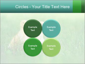 0000081149 PowerPoint Templates - Slide 38