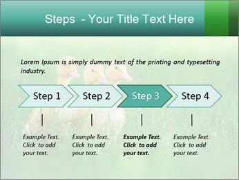 0000081149 PowerPoint Template - Slide 4