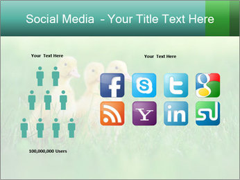 0000081149 PowerPoint Template - Slide 5