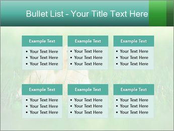 0000081149 PowerPoint Templates - Slide 56