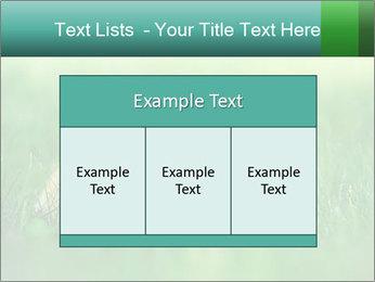 0000081149 PowerPoint Templates - Slide 59