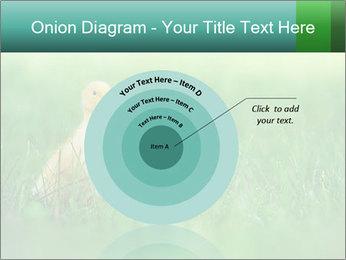 0000081149 PowerPoint Templates - Slide 61