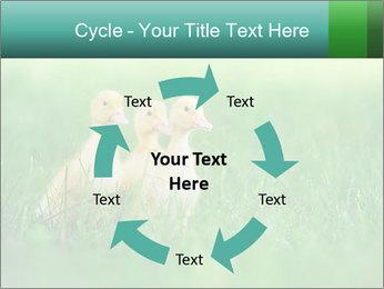 0000081149 PowerPoint Templates - Slide 62