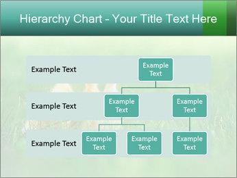 0000081149 PowerPoint Templates - Slide 67