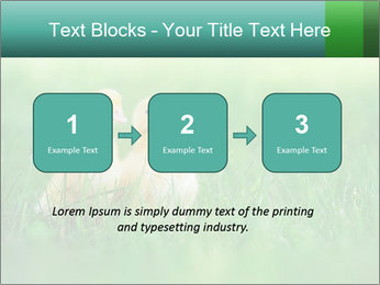 0000081149 PowerPoint Template - Slide 71