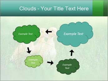0000081149 PowerPoint Templates - Slide 72