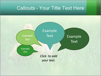 0000081149 PowerPoint Templates - Slide 73