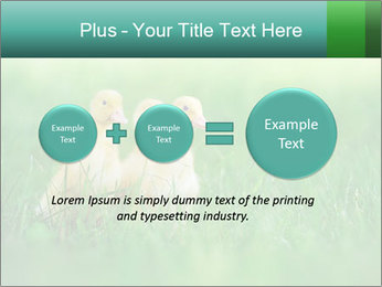 0000081149 PowerPoint Template - Slide 75